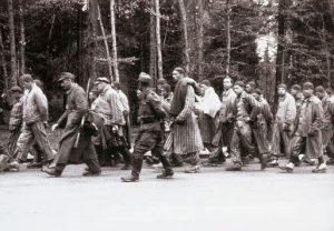 Fångar på dödsmarsch - Auschwitz